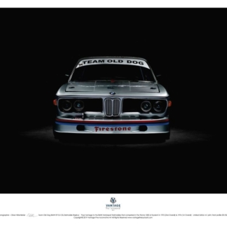 Team Old Dog BMW E9 3.5 CSL Batmobile Replica